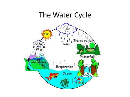 The Water Cycle. Link Where do puddles go? Essential Question How does water move around Earth's atmosphere and lithosphere (ground)? ?