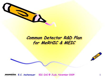 Common Detector R&D Plan for MeRHIC & MEIC E.C. JLab, November 20091.