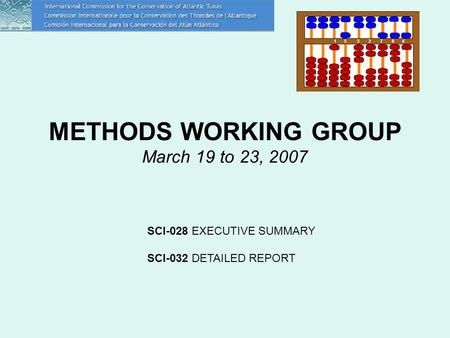 METHODS WORKING GROUP March 19 to 23, 2007 SCI-028 EXECUTIVE SUMMARY SCI-032 DETAILED REPORT.