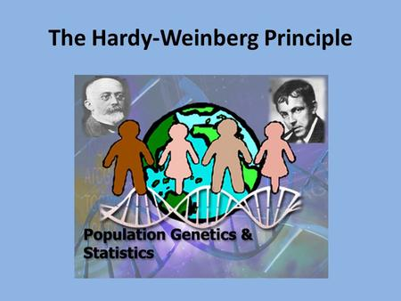 "The Hardy-Weinberg Principle. Modern biologists' definition of ""evolution"" = the change in genetic makeup (or gene pool) of a population over time. What's."