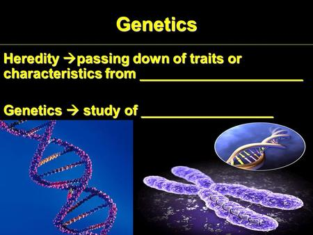 Genetics Heredity  passing down of traits or characteristics from _____________________ Genetics  study of _________________.