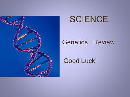 SCIENCE Genetics Review Good Luck! #1 What do we call the passing of traits from parents to offspring? Probability Recessive Heredity.