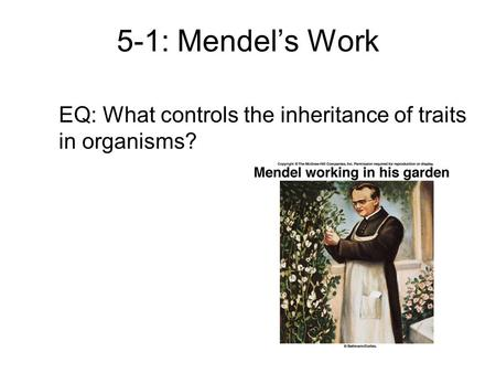 5-1: Mendel's Work EQ: What controls the inheritance of traits in organisms?