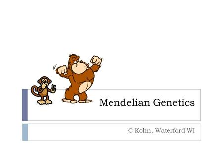 Mendelian Genetics C Kohn, Waterford WI. Genetics  Genetics is the study of inheritance of genes.  i.e. genetics is how traits are passed down from.