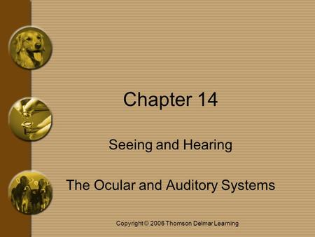 Copyright © 2006 Thomson Delmar Learning Chapter 14 Seeing and Hearing The Ocular and Auditory Systems.