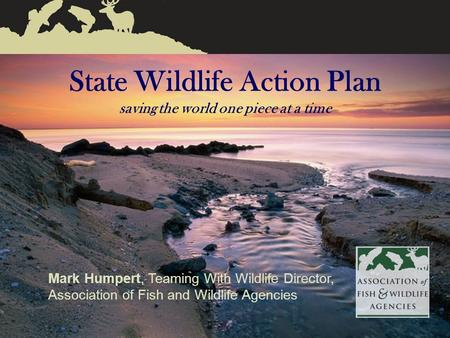 Association of Fish & Wildlife Agencies 1 State Wildlife Action Plan saving the world one piece at a time Mark Humpert, Teaming With Wildlife Director,