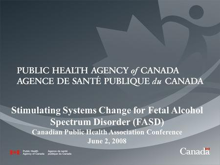 1 Stimulating Systems Change for Fetal Alcohol Spectrum Disorder (FASD) Canadian Public Health Association Conference June 2, 2008.