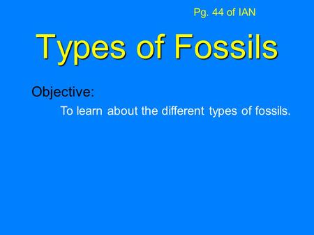 Types of Fossils Pg. 44 of IAN Objective: To learn about the different types of fossils.