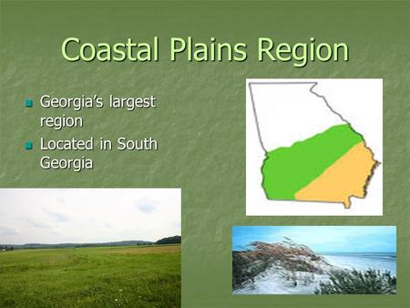Coastal Plains Region Georgia's largest region