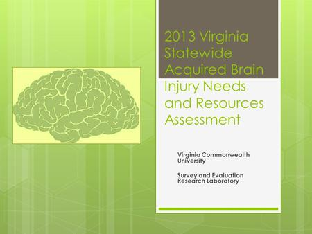 2013 Virginia Statewide Acquired Brain Injury Needs and Resources Assessment Virginia Commonwealth University Survey and Evaluation Research Laboratory.