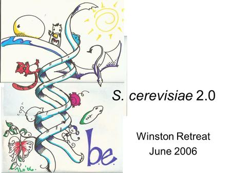 "Winston Retreat June 2006 S. cerevisiae 2.0. Engineered Biological Systems Nature has optimized biology (""artifacts"") Technologies exist to optimize differently."