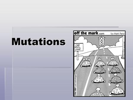 Mutations. Mutation  Permanent changes or errors in a DNA sequence  Copied during DNA replication  Therefore heritable  OR may occur during transcription.