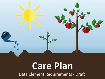 Care Plan Data Element Requirements - Draft. Growing solutions Static title slide.