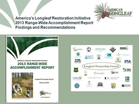 America's Longleaf Restoration Initiative 2013 Range-Wide Accomplishment Report Findings and Recommendations.