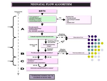 NEONATAL FLOW ALGORITHM BIRTHBIRTH Term gestation? Amnlotic fluid clear? Breathing or crying? Good muscle tone?u Provide warmth Position clear airway*