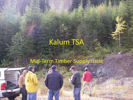 Kalum TSA Mid-Term Timber Supply Issue. Land classification Reduction area (ha) Result (ha) Gross TSA area 2,300,464 Large parks 460,845 Tree Farm Licences.