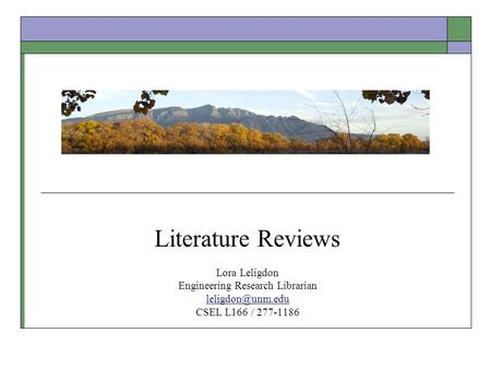 Literature Reviews Lora Leligdon Engineering Research Librarian CSEL L166 / 277-1186.