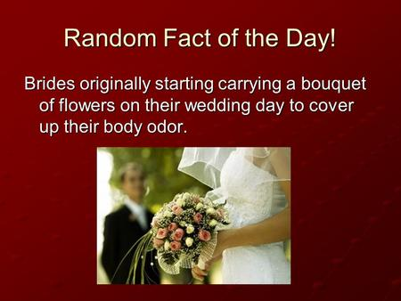 Random Fact of the Day! Brides originally starting carrying a bouquet of flowers on their wedding day to cover up their body odor.