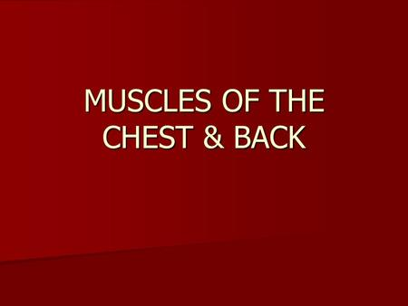 MUSCLES OF THE CHEST & BACK