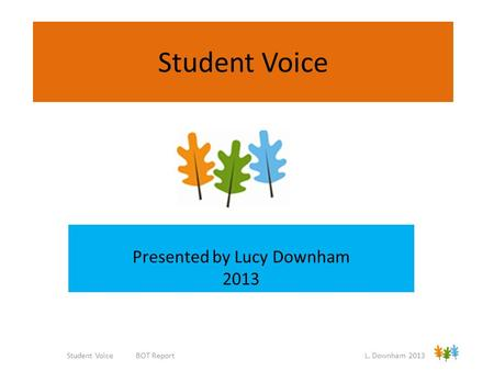 Student Voice Presented by Lucy Downham 2013 Student Voice BOT Report L. Downham 2013.