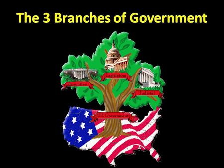 What do you mean, branches? Under the US Constitution, the responsibilities of government are split between three separate and equal branches.