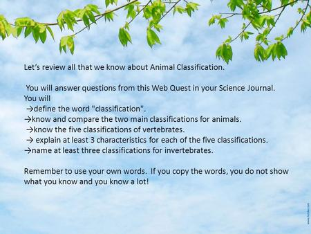 Let's review all that we know about Animal Classification. You will answer questions from this Web Quest in your Science Journal. You will →define the.