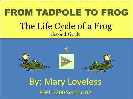 Start By: Mary Loveless EDEL 2200 Section 02 The Life Cycle of a Frog Second Grade.