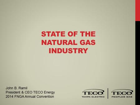 STATE OF THE NATURAL GAS INDUSTRY John B. Ramil President & CEO TECO Energy 2014 FNGA Annual Convention.