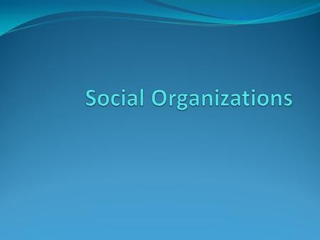The Role of Social Organizations Human beings are social creatures This means that they prefer to live in groups Social Organizations bring structure.