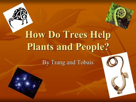 How Do Trees Help Plants and People? By Trang and Tobais.
