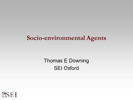 Socio-environmental Agents Thomas E Downing SEI Oxford.