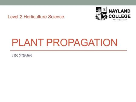 PLANT PROPAGATION US 20556 Level 2 Horticulture Science.