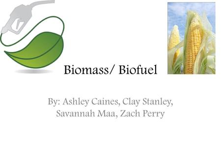 Biomass/ Biofuel By: Ashley Caines, Clay Stanley, Savannah Maa, Zach Perry.
