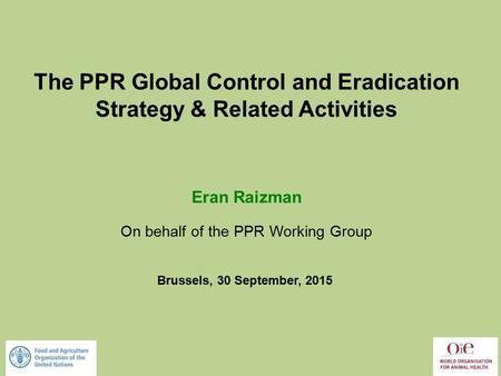 The PPR Global Control and Eradication Strategy & Related Activities