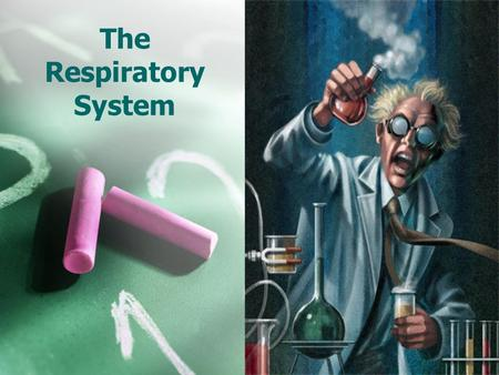 The Respiratory System. The process in which oxygen and glucose undergo a complex series of chemical reactions inside cells is called… RESPIRATION.