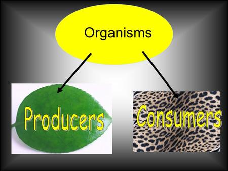 "Organisms. Think like a SCIENTIST… Scientist call plants ""producers""! Why use this term? Plants are produce rs because they ""produce"" or make, their own."