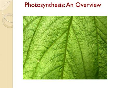 Photosynthesis: An Overview.  The key cellular process identified with energy production is photosynthesis.  Photosynthesis is the process in which.