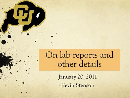 On lab reports and other details January 20, 2011 Kevin Stenson.