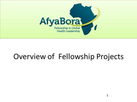 1 Overview of Fellowship Projects. Project to depend on what is available in host institution with strong mentorship Should address activities and tasks.
