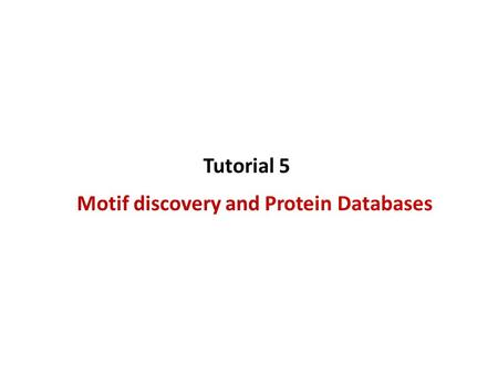 Motif discovery and Protein Databases Tutorial 5.