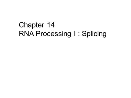 Chapter 14 RNA Processing I : Splicing.