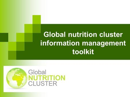 Global nutrition cluster information management toolkit.