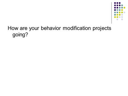 How are your behavior modification projects going?