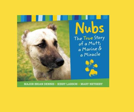Nubs is a story of friendship. What do you look for in a friend?