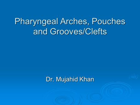 Pharyngeal Arches, Pouches and Grooves/Clefts