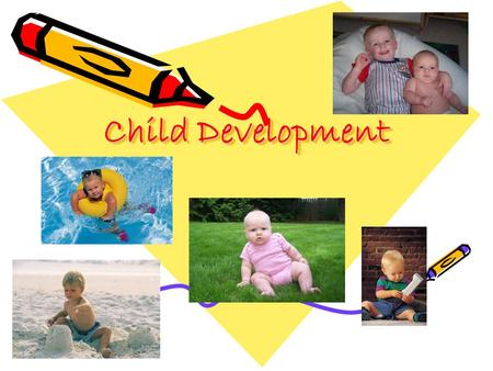 Child Development. Why Study Child Development?? The Top TEN Reasons 1.You will learn about the person you are. 2. You will learn about the child you.