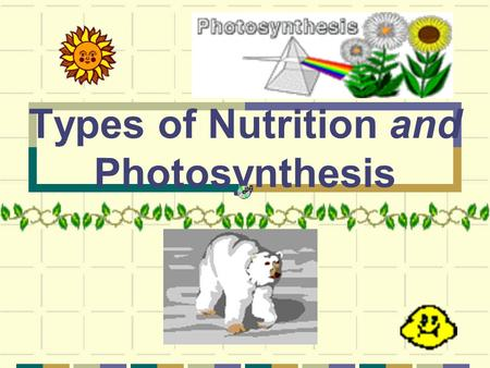 Types of Nutrition and Photosynthesis