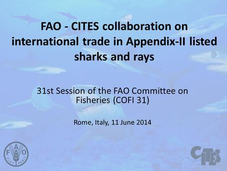 FAO - CITES collaboration on international trade in Appendix-II listed sharks and rays 31st Session of the FAO Committee on Fisheries (COFI 31) Rome, Italy,
