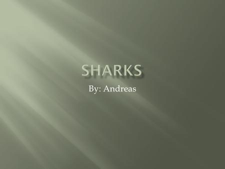 By: Andreas.  Sharks live everywhere in the world  Some sharks like hot water and some like cold water.