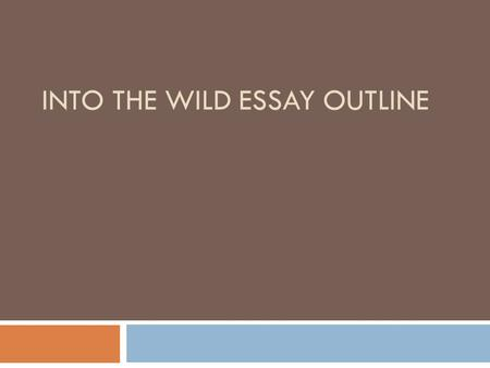 Into the wild reflection essay assignment